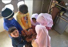 بخاریهای نفتی مدارس گیلان جمعآوری میشود