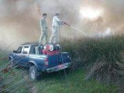 مهار آتش سوزی تالاب بوجاق کیاشهر